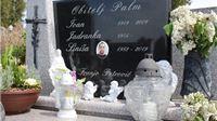 Dvije godine od smrti Siniše Palma (5): Pokop tajni i bestidna javna kleveta