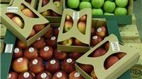 Jabuke prvi proizvodi označeni znakom Dokazana kvaliteta – Hrvatska