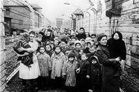 Ljubo R. Weiss povodom dana holokausta: Sedam tona ljudske kose